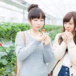 ポケモンGO 愛知、三重のポケモンの巣纏め情報11月2日更新版