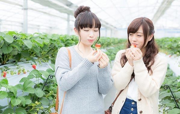 ポケモンGO 愛知、三重のポケモンの巣纏め情報10月4日版