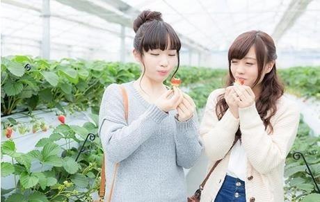 ポケモンGO 愛知、三重のポケモンの巣纏め情報11月5日更新版